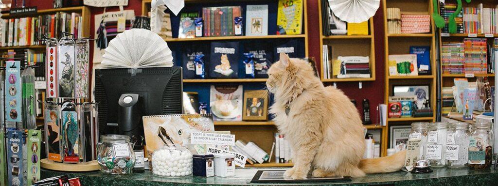 Chilliwack bookstore